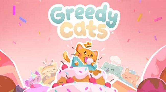Greedy Cats – Khi những chú mèo tham lam ăn miếng trả miếng lẫn nhau