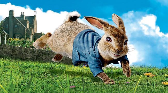 Peter Rabbit Run! – Trải nghiệm vui nhộn từ phim của Colombia Pictures