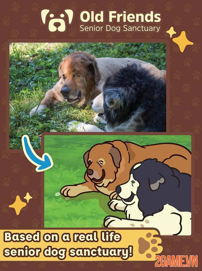 Old Friends Dog Game - Game chăm sóc thú cưng đầy tính nhân văn 2