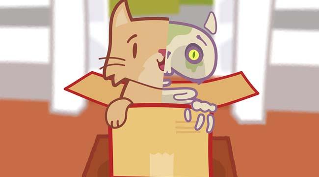 Kitty Q – Game giải đố với cảm hứng nghịch lý con mèo của Schrödinger