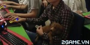 Thanh niên bế chó ra quán net chơi game khiến chủ quán ngạc nhiên