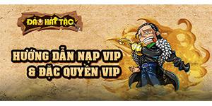 Đảo Hải Tặc – Hướng Dẫn Nạp Vip Và Đặc Quyền VIP