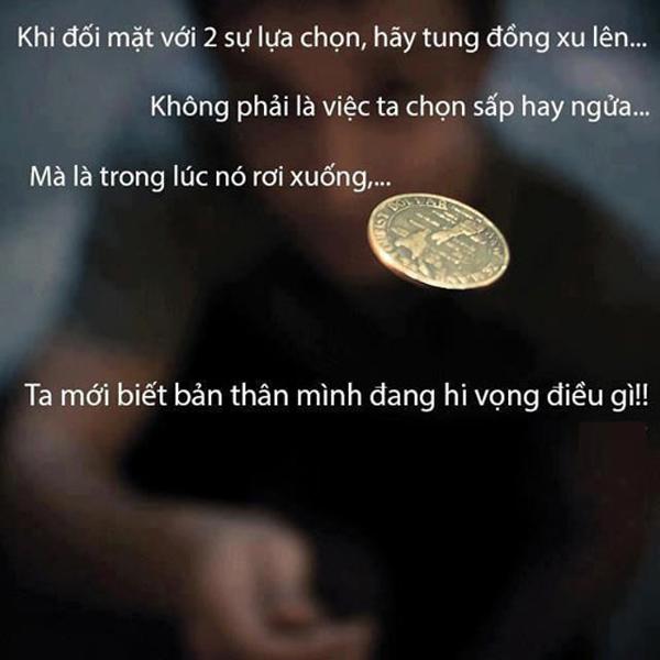dong-xu
